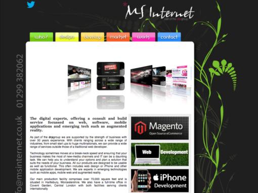 MS Internet